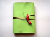 <h5>Liseuse cuir vert pomme et carnet coordonné</h5>