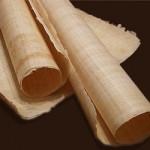 Rouleaux de papyrus